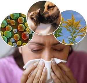 Почему шелушится кожа в ушах