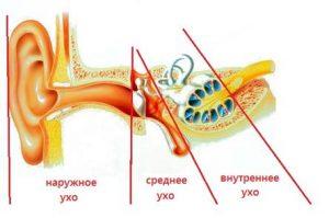 Камфорное масло — применение при боли в ушах